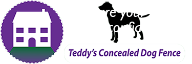 Teddy's Concealed Dog Fence